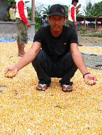 04. H. Demaneseh, Ds. Tandung, Malangke, Luwu Utara 2