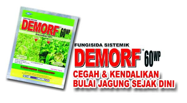 demorf